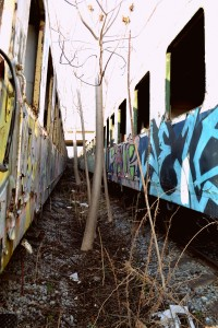 Ghost trains 15