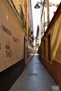 Malaga (109)